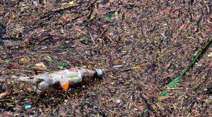 reducir el plástico