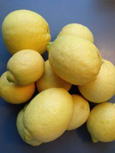 Limones del árbol Martina Ferrer
